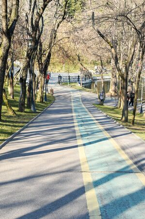 bicycle track drawn on a valley road from Alexandru Ioan Cuza Park in Bucharest.movement for a healthy lifestyle