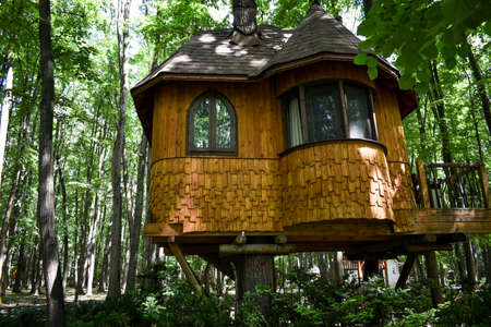 wooden house in the tree. Edenland Park in Bucharest, Romania 스톡 콘텐츠