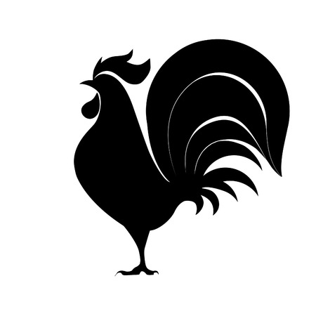 black and white rooster stock photos royalty free black and white