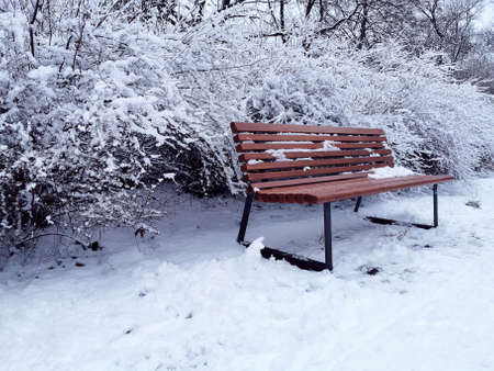 Winter scene with a wooden bench in the park