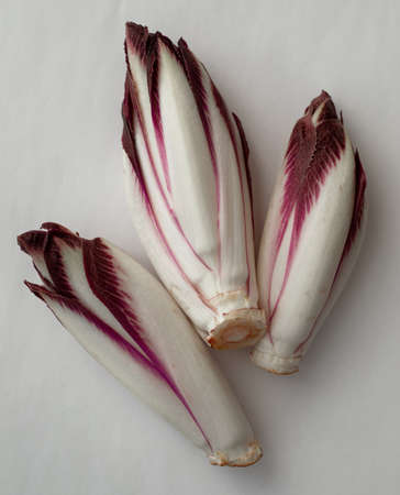 Fresh red chicory on a white background Banque d'images