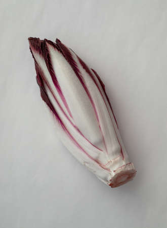 Fresh red chicory on a white background