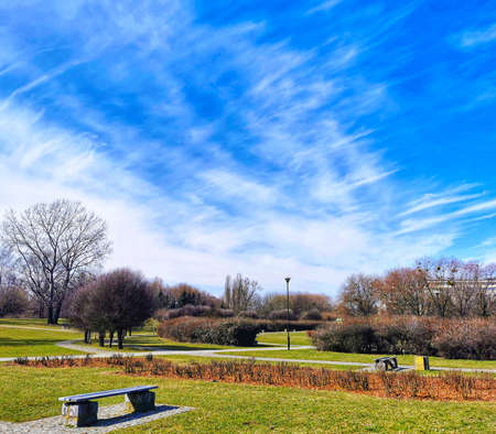Landscape of a field of grass, trees, benches, sky and greenery in a public park