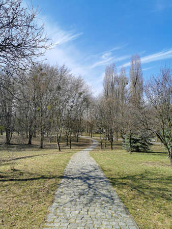 Walking path in a public park in early spring