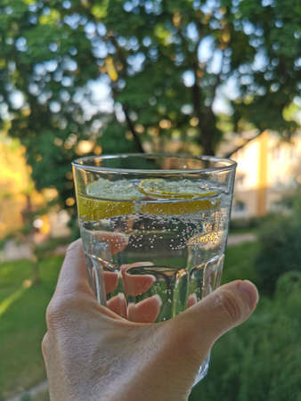 A glass of clean water with lemon slices in the early morning on a trees background