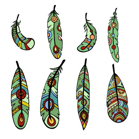 Sketch hand drawn of birds feathers. Illustration