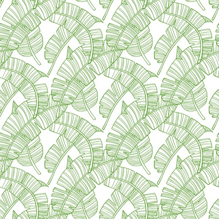 Seamless Pattern. Tropical Palm Leaves Background. Banana Leaf. Vector. Exotic Texture. Design Wallpaper. Illustration