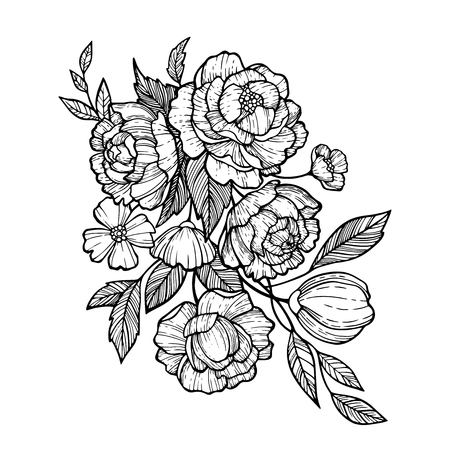 Sketch Floral Botany set. Peony,Fever few,Camellia, Narcissus,Daisy and leaf drawings. Black and white with line art on white background. Hand Drawn Illustrations.Vintage styles. Illustration