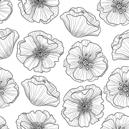 Hand drawn artistic ethnic ornamental patterned floral frame in doodle,  style for adult coloring pages, t-shirt or prints. Vector spring illustration with poppies.seamless pattern