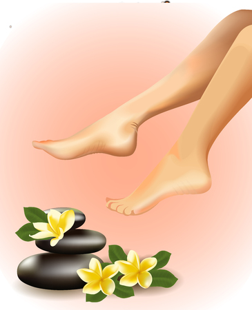 Vector illustration of SPA concept with realistic female feet, frangipani and stones. Illustration