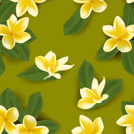 Seamless pattern with frangipani flower. Vector illustration