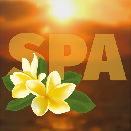 oriental medicine: Spa concept with blurred seaside background and realistic frangipani flower. Vector illustration.