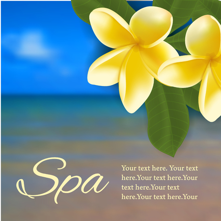 frangipani flower: Spa concept with blurred seaside background and realistic frangipani flower. Vector illustration.