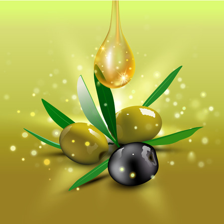 hannukah: Realistic green and black olives with olive leaves and oil drop on green background. Vector illustration. Olive festival in Spain, Hanukkah