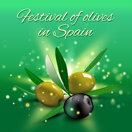 olive leaves: Realistic green and black olives with olive leaves on green background. Vector illustration. Olive festival in Spain, Hanukkah