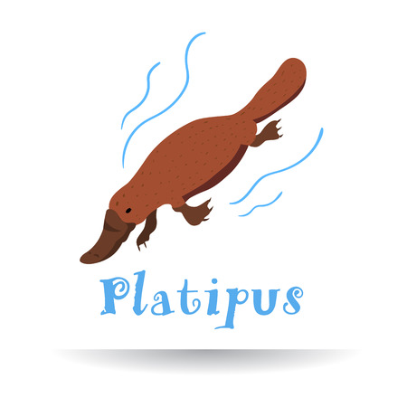 Handdrawn Platipus icon with text for business. Vector illustration.
