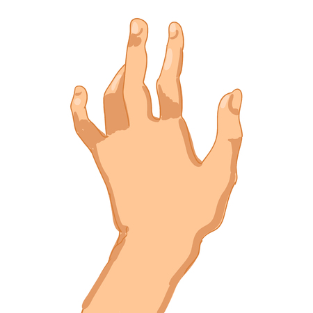Vector illustration of Woman hand on white background.