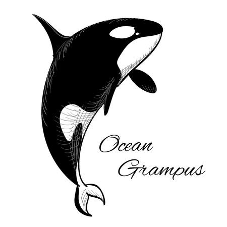 Vektor-Illustration von Grampus Symbol in Doodle-Stil auf weißem Hintergrund mit Text.