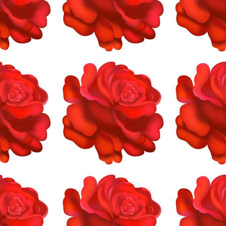petal: Seamless red roses pattern on white background. Vector illustration Illustration
