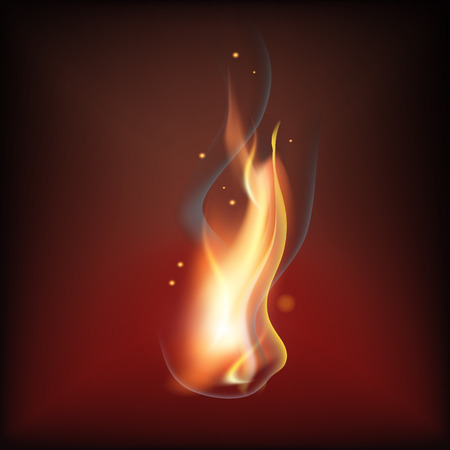 Realistic fire flame Illustration
