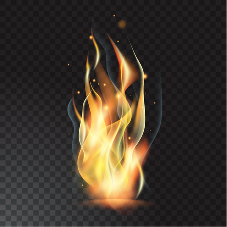 Realistic fire flame on a colorful presentation. Illustration
