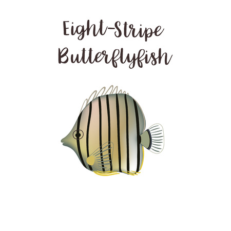 Eight-stripe vector realistic style illustration. Sea fish cartoon Çizim