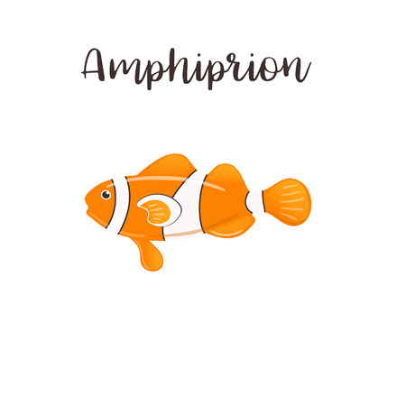 Cartoon clown fish. Amphiprion vector realistic illustration. Sea fish Çizim