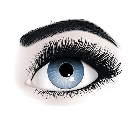 Eye lash extension illustration. Fresh dark blue woman's eyes. Idea for business visit cards. Print for t -shirt. Vector illustration EPS 10 Banque d'images - 117633468
