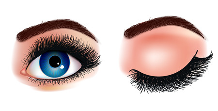Eye lash extension illustration. Fresh dark blue womans eyes. Idea for business visit cards. Print for t -shirt. Vector illustration EPS 10
