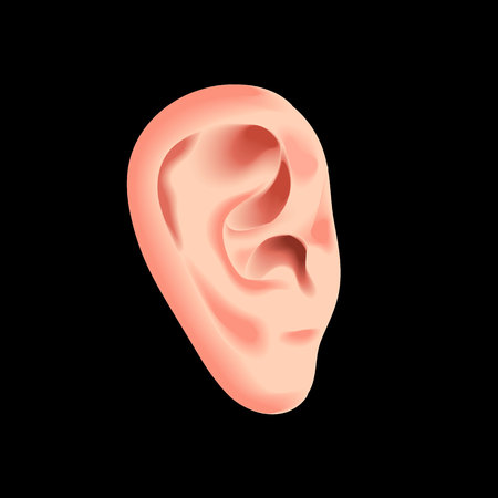 Human ear isolated on black photo-realistic vector illustration