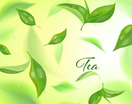 Vector high detailed background with green tea leaves in motion. Blurred tea leaves. Realistic concept banner for ad, packaging or tea products. Illustration