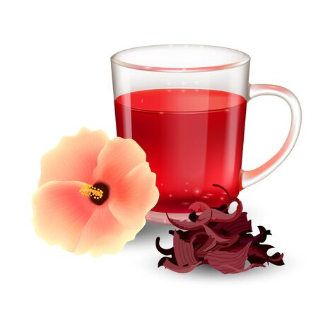 Hibiscus tea in a glass mug and flower isolated on a white background. Dry roselle bract tea. Realistic vector illustration.