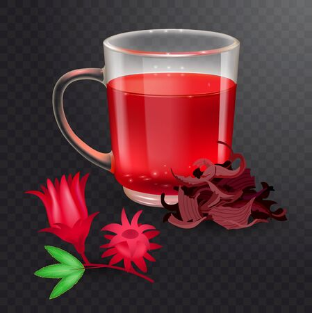 Hibiscus tea in a glass mug and roselle bract isolated on a transparent background. Dry roselle bract tea. Realistic vector illustration.