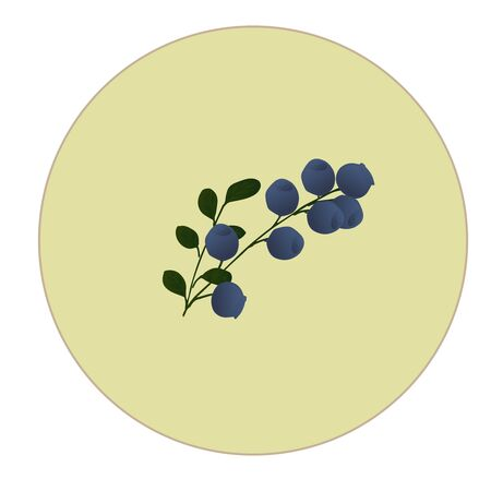 Blueberries are blue on a white background with green leaves. Branch with berries 3D blueberries with leaves