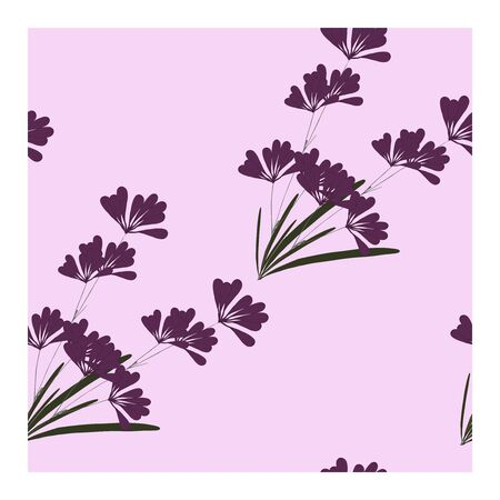 Seamless pattern with flowers, buds and lavender leaves. Floral print, ornament, composition with lavender flowers of purple and pink color. Lavender in bouquets on a pink background.. Vector illustration Ilustración de vector