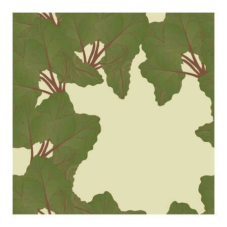 Seamless pattern with large green and red rhubarb leaves on a grey background. Abstract pattern with leaves. Painted rhubarb leaves of different colors. Botanical illustration of the rhubarb plant in an abstract pattern.. Vector illustration