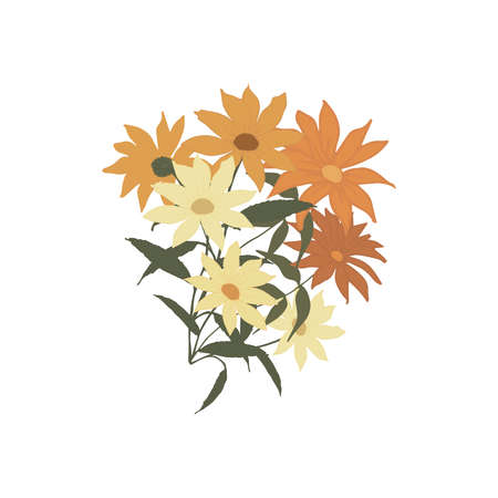 Pattern with multi-colored daisies in orange, Burgundy, beige with leaves in a bouquet. Illustration of flowers on a white background. Design for textiles, paper, layout, clipart, stickers, greeting. Vector illustration