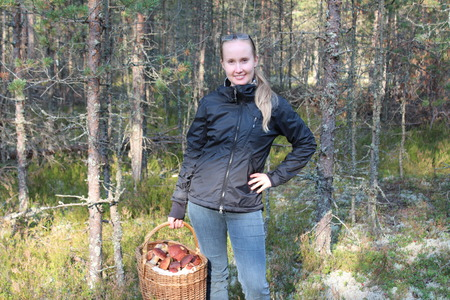 gatherer: Young woman with a basket of cepes mushrooms in the forest Stock Photo