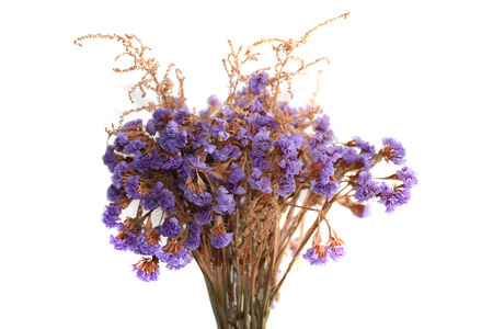 dried flower arrangement: The bunch of limonium flowers isolated on white.