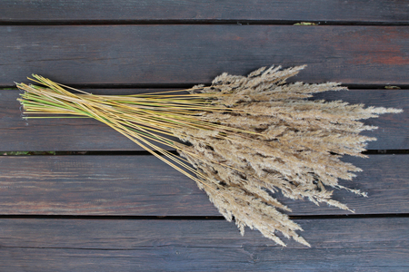 dried flower arrangement: A bunch of dried grass on the wood material.