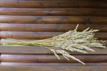 dried flower arrangement: A bunch of dried grass. Stock Photo