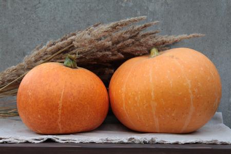 dried flower arrangement: Pumpkins Stock Photo