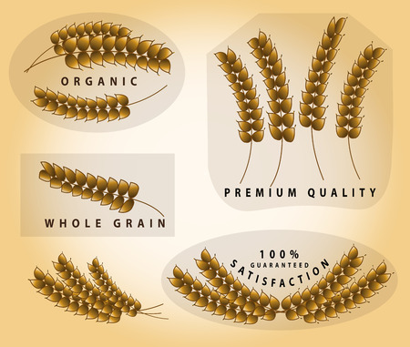 spelt: Wheat icon set. Illustration
