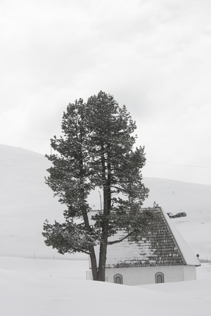 Snow-capped mountains, house and tree. Reklamní fotografie