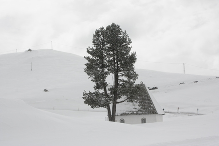 snowcapped: Snow-capped mountains, house and tree. Stock Photo