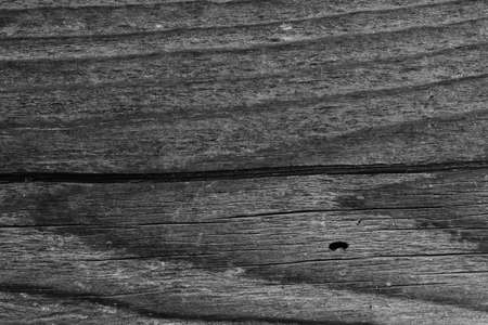 wooden desk texture background tree black and white wood