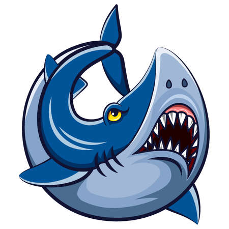Cartoon white shark mascot of illustration
