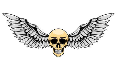 The thin human skull with the silver wing for the logo inspiration of illustration