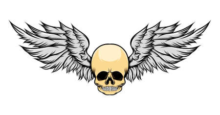 The illustration of the dead skull with the wide forehead and wings