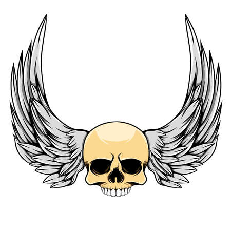 The vintage illustration of the head skull with the long wings
